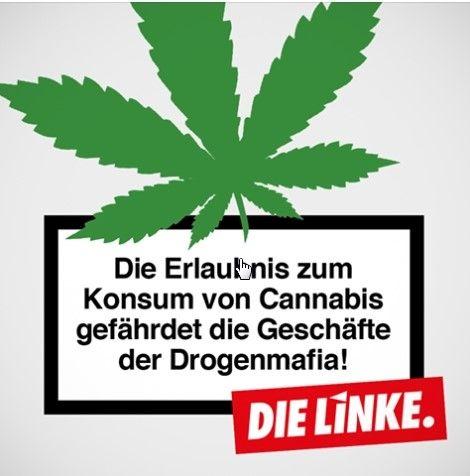 """""""Facebook""""-Plakat der Lonken mit der Aufschrift: """"Die Erlaubnis zum Konsum von Cannabis gefährdet die Geschäfte der Dogenmafia."""""""
