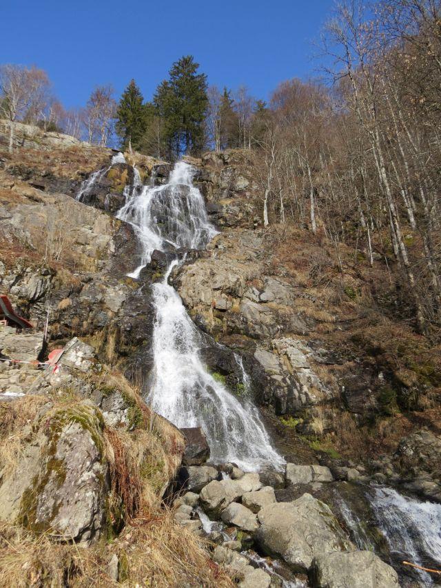 Biosphärengebiet Schwarzwald als Lernort für nachhaltige Entwicklung ...