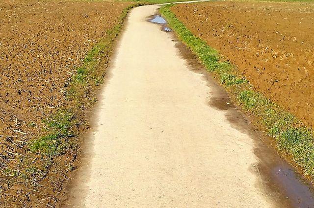 Asphaltierter Weg in der Mitte, links und rechts kaum noch erkennbar der Feldrain mit etwas grünem Gras. Die Äcker grenzen fast unmittelbar an den Weg an.
