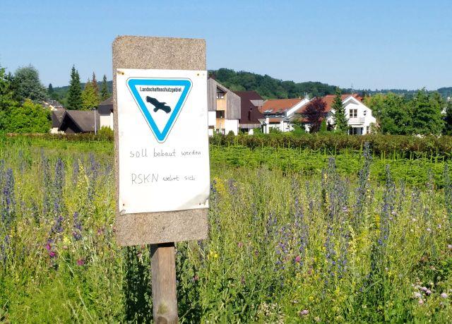 """Schild """"Landschaftsschutzgebiet"""" vor einer blühenden Wiese in Esslingen-Rüdern, die bebaut werden soll."""