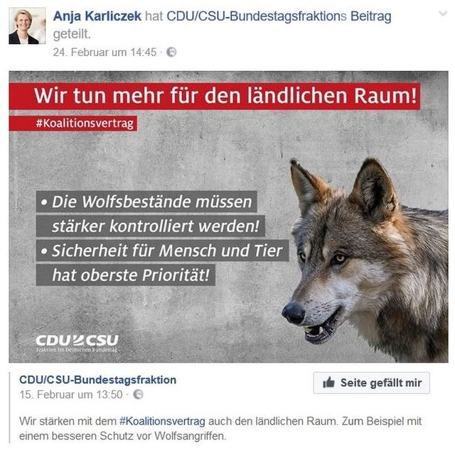 Anja Karliczek hetzt auf ihrer Facebook-Seite gegen Wölfe.