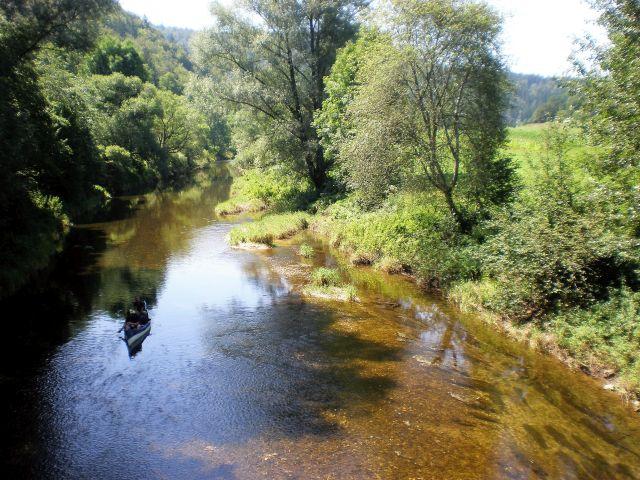 Kleiner Fluss umgeben von Bäumen und Grasflächen.