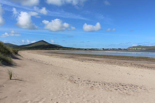 Links eine Sanddüne mit etwas Bewuchs, links der Sandstrand bis bzum Meern. Alles ist sauber.
