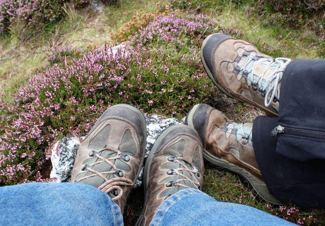 Die Stiefel an den Füßen von zwei Wanderern vor Heidekraut.