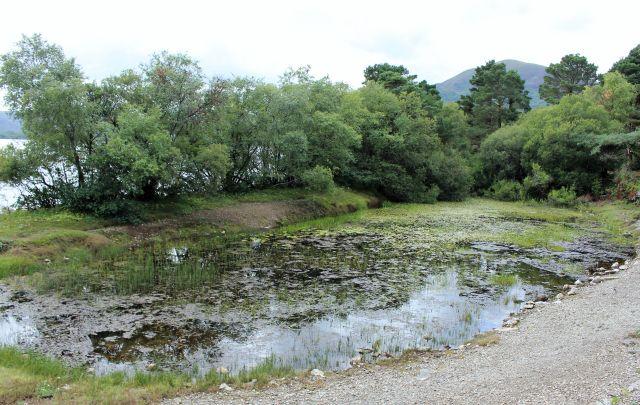 Blick auf eine vollgelaufene Mine, dahinter ein niedriger Damm gegen das Wasser des Loch Leane. Auf dem kleinen Teich schwimmen Seerosen.