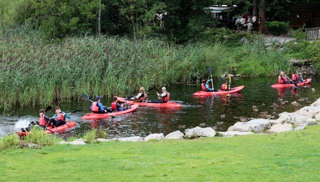 Kanuten fahren vom Loch Leane durch einen kleinen Kanal zum Hafen. Die rotren Kanus mit jemweils zwei Personen sind umgeben von Schilf.