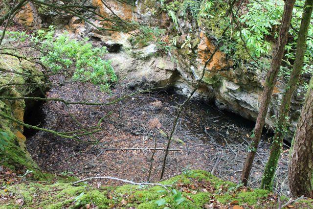 Blick in ein früheres Abbaugebiet mit Gestein in unterschiedlichen Farbtönen, z.B. rotbraun. Umgeben ist die Grube von Bäumen und Sträuchern.