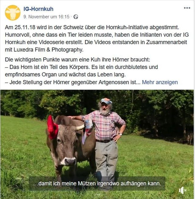 Armin Capaul mit Mütze, buntem Hemd und grauer Hose. Neben ihm eine Kuh mit Hörnern, an denen jeweils eine Mütze hängt.