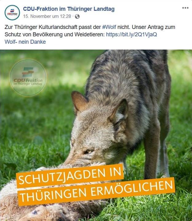 Wolf mit Beute und darüber in großen Lettern: Schutzjagden in Thüringen ermöglichen.