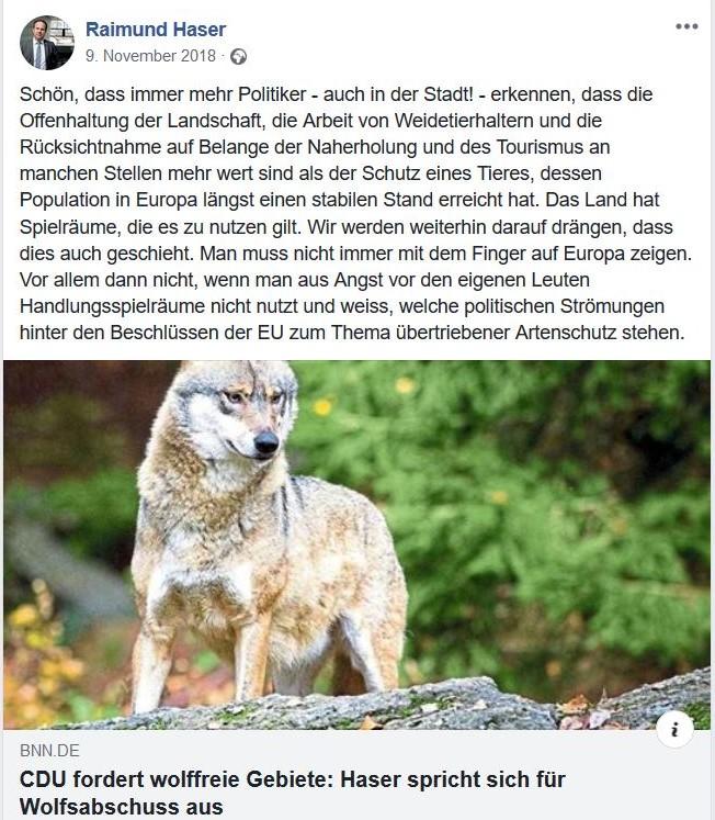Ein Foto mit einem Wolf in einem Facebook-Post. Raimund Haser spricht sich im Text für den Erhalt der offenen Kulturlandschaft aus und fordert daher den Abschuss von Wölfen.
