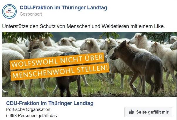 Schafe in einem Facebook-Post und darüber der Schriftzug 'Wolfswohl nicht über Menschenwohl stellen'.