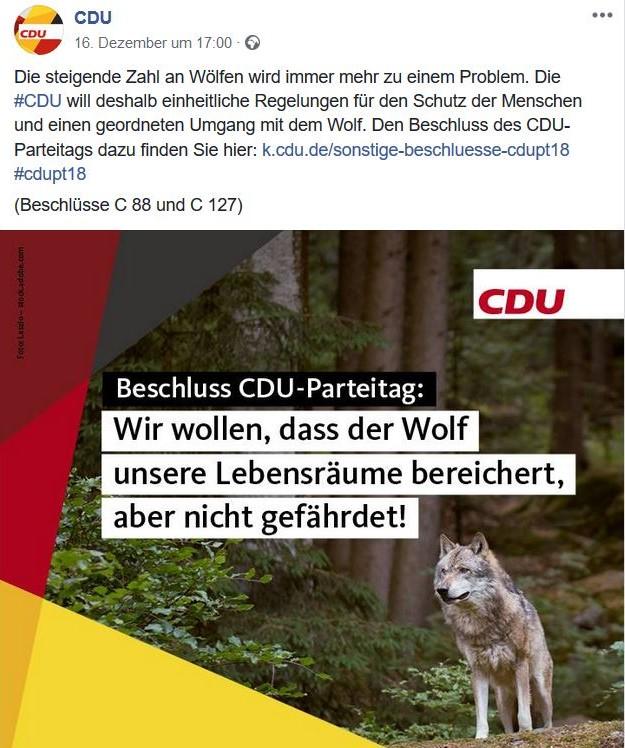 CDU-Facebook-Post mit einem Wolf und dem Text: 'Wir wollen, dass der Wolf unsere Lebensräume bereichert, aber nicht gefährdet!'
