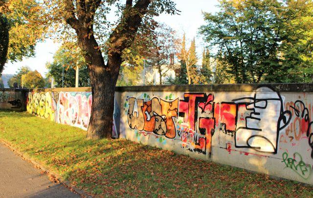 Ein dicker Baumstamm wurde ausgespart. Die gesamte Mauer dahinter ist mit wirren Buchstaben beschrieben.