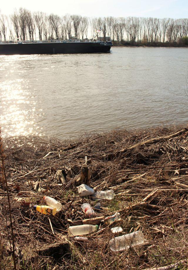 Leere Plastikflaschen mit unterschiedlichen Aufklebern direkt am Rheinufer im Wintergras. Auf dem Rhein passiert gerade ein Binnenschiff.