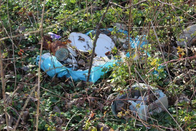 Ein aufgerissener großer baluer Müllsack mit einem alten Topf, leeren Blechdosen und weiterem Müll - umgeben vom aufkommenden Frühlingsgrün.