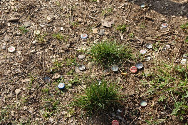 Unterschiedliche Kronkorken - Flaschenverschlüsse zwischen einigen Grasbüscheln.