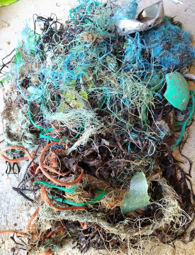 Grüne und blaue Plastikteile und Netzfetzen.