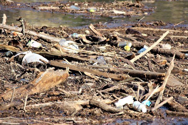 Zwischen Treibholz sind leere Plastikflaschen, Dosen und anderer Unrat zu sehen.