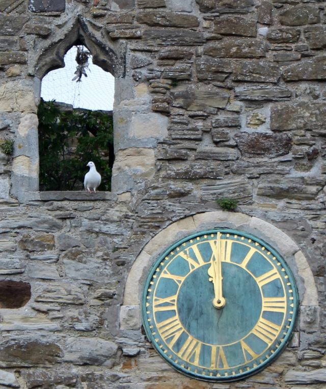 Eine weiße Tauve sitzt in einem leeren Fensterrahmen aus Natursteinen. Daneben eine Uhr mit goldenen Ziffern und Zeigern. Eine weiße Taube sitzt im Fensterrahmen.