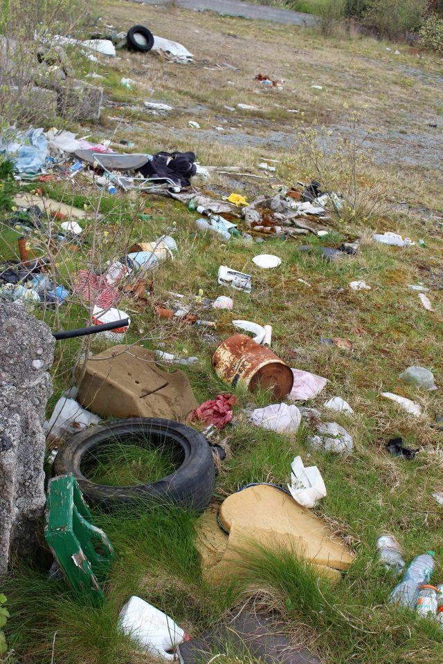 Große und kleine Müllteile auf einer Rasenfläche.