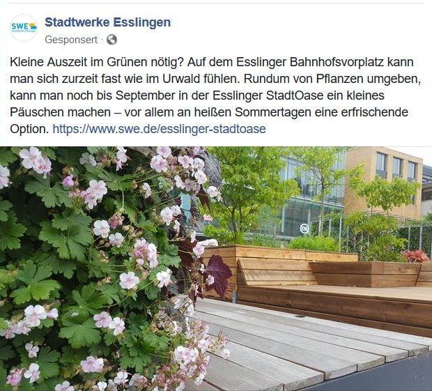 """Die Stadtwerke sehen in der """"StadtOase"""" schon einen """"Urwald"""" -in: """"Esslinger """"StadtOase"""" – grüner Tupfer in steinernem Umfeld. Symbolpolitik hilft Natur, Umwelt und Klima nicht"""" – www.deutschland-geliebte-bananenrepublik.de"""