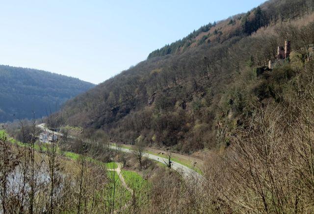 """Das Schwalbennest - eine Burg in Neckarsteinach. - in: """"Der Neckar: Vom 'wilden Fluss' zur Wasserstraße. Ein unterschätzter Fluss als Lebens- und Wirtschaftsader"""" – www.deutschland-geliebte-bananenrepublik.de"""