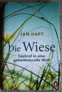 Cover des Buches 'Die Wiese' von Jan Haft.