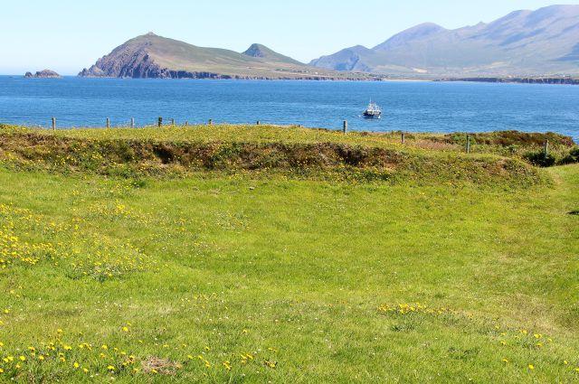 Der Vordergrund ist mit Gras bewachsen, dahinter eine Meeresbucht, und auf der anderen Seite Berge.