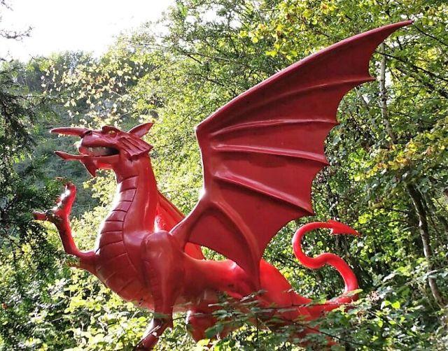 Der walisische Drache ist rot. Seine Flügel sind aufgeklappt. Im Hintergrund Bäume.
