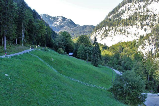 Die Dammwiese oberhalb von Hallstatt ist tiefgrün. Dahinter schroffe Felsen.