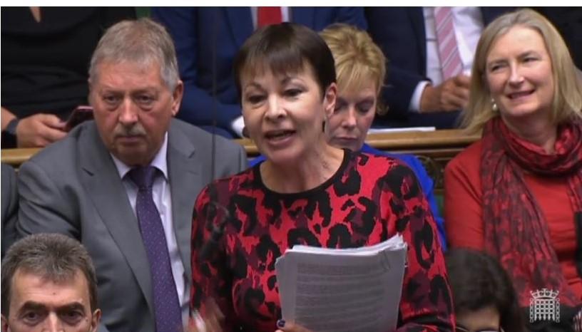 Caroline Lucas mit dunkelbraunen Haaren im rot-schwarzen Oberteil mit einem weißen Bericht in der Hand.