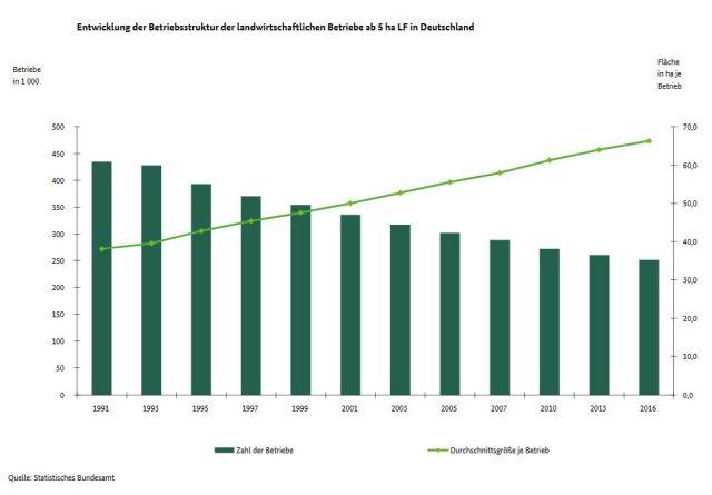 Schaubild mit Säulen, die den Rückgang der bäuerlichen Betriebe nachzeichnen und einer Kurve, die die Zunahme der Fläche bei den verbleibenden Betrieben darstellt.