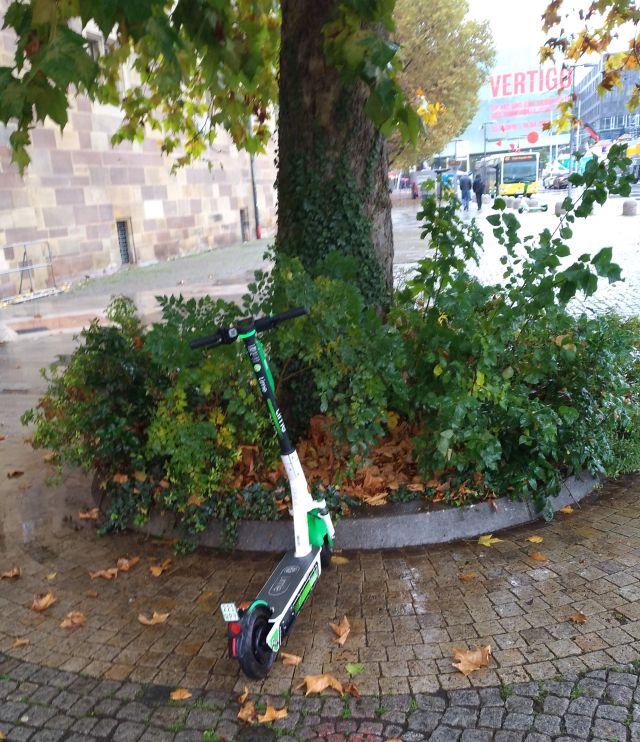 E-Scooter bei einem Baum geparkt. Im Hintergrud ein gelber Omnibus.