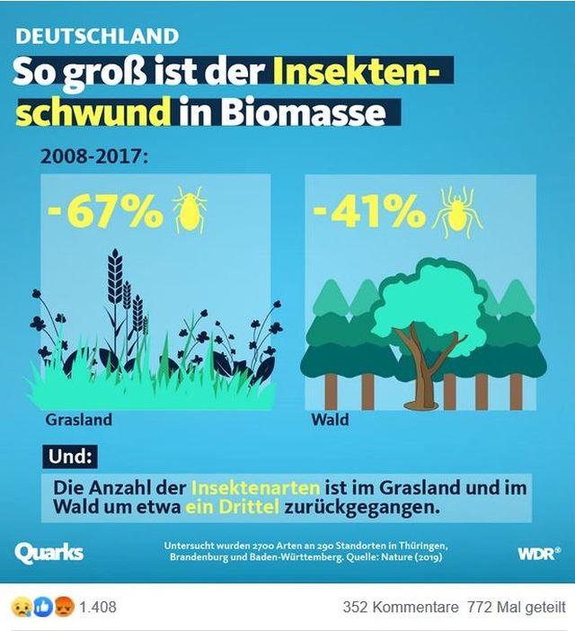 Grafik aus Quarks. Dargestellt wird der Rückgang der Insekten im Grünland um 67%, im Wald um 41%.