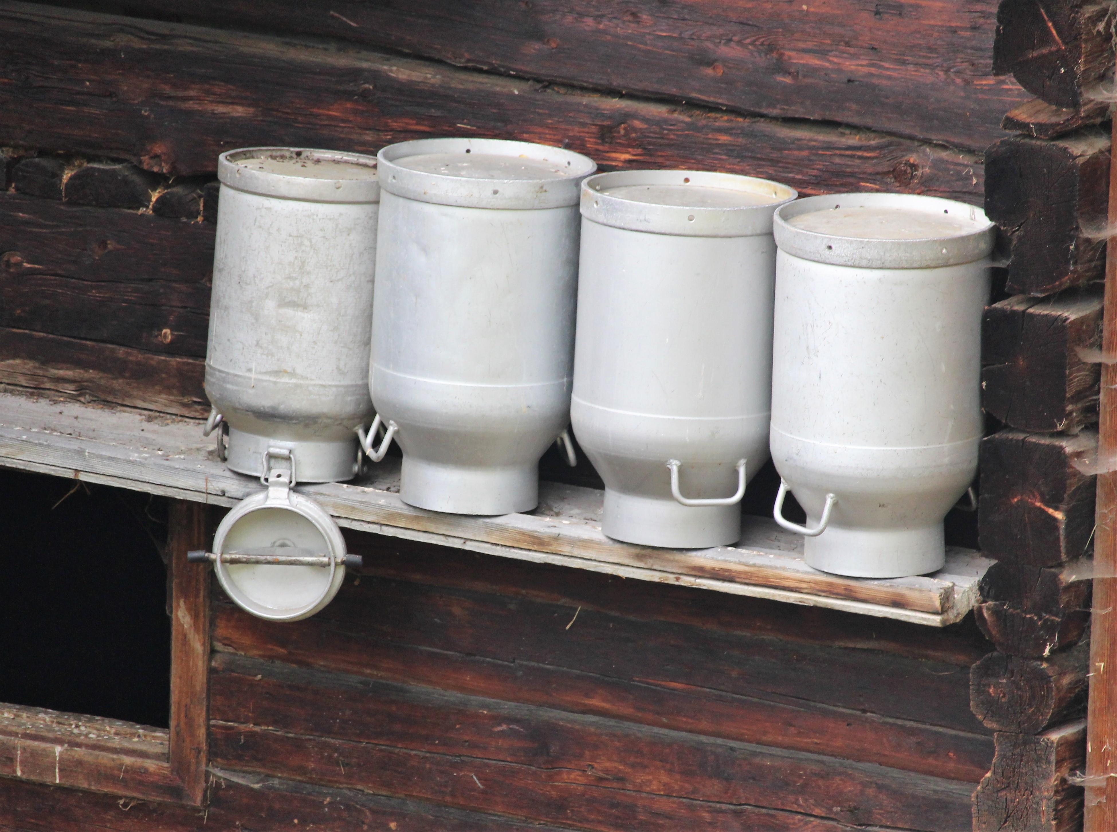 Auf den Kopf gestellte Milchkannen auf einem Holzbrett.