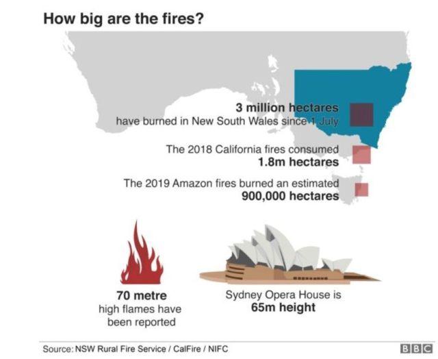 Grafik mit Angaben zur verbrannten Fläche. Siehe Bildtext.