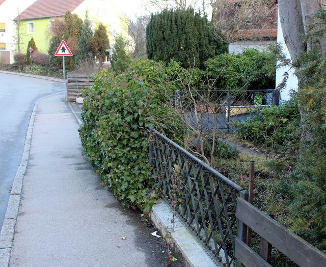 links der asphaltierte Gehweg an der Straße, rechts Efeupflanzen, die leicht in den Gehweg hinein ragen.