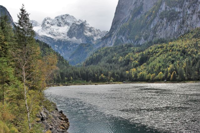 Blick über den Gosausee, der von hohen Bergen umgeben ist, auf den Dachstein mit Gletscher.
