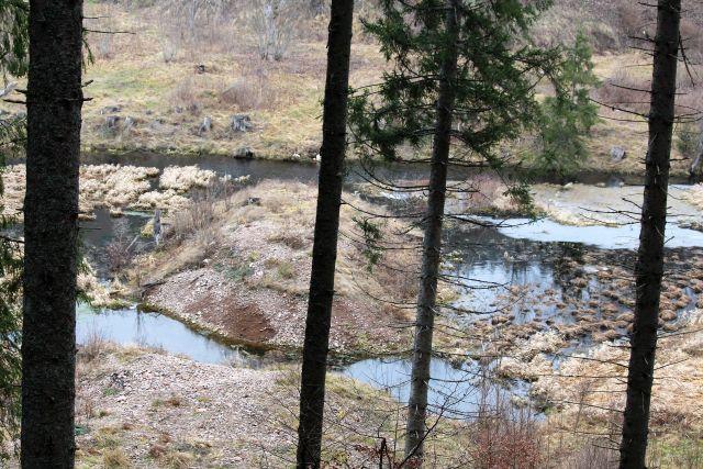 Blick durch einige Bäume auf die Moränen des Ursee-Gletschers. Sichtbar ist eine Art Damm aus Gestein, der heute vom Urseebach durchbrochen ist.
