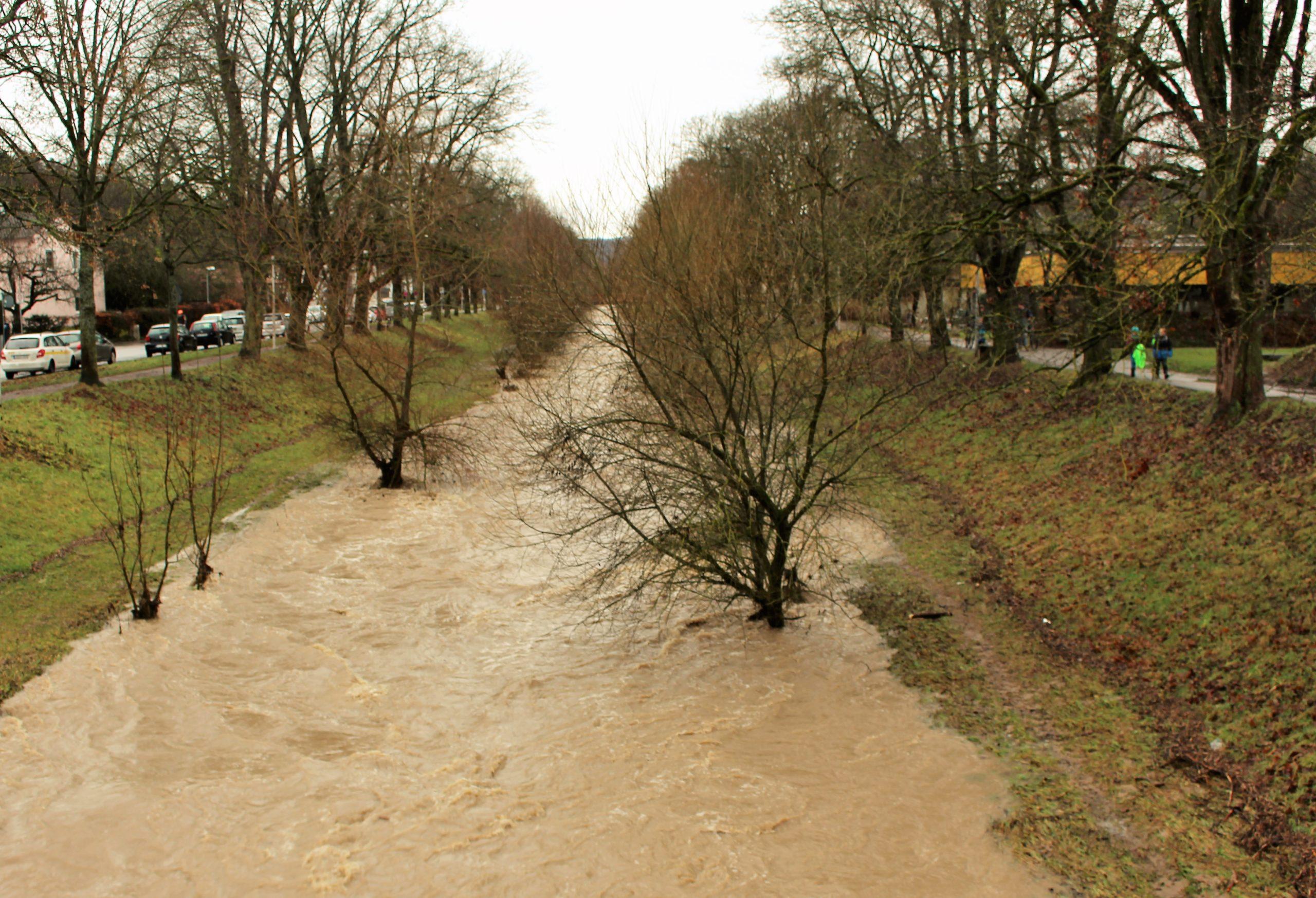 Die ansonsten kleine Steinlach in Tübingen hat sich zu einem braunen Wasserkanal entwickelt. Bäume stehen im Wasser.