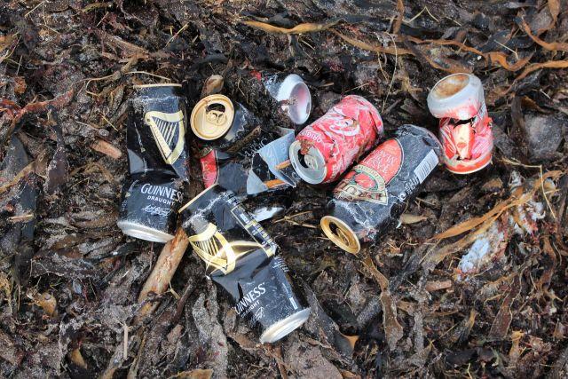 Leere Bier und andere Getränkedosen in verschiedenen Farben auf angespültem Seetang.