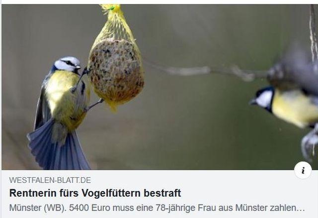 """Facebook-Post mit einer Meise an einem Meisenknödel. Das Westfalen-Blatt titelt: """"Rentnerin fürs Vogelfüttern bestraft""""."""