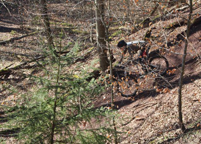 Ein Mann auf einem Mountainbike fährt durch den Wald.