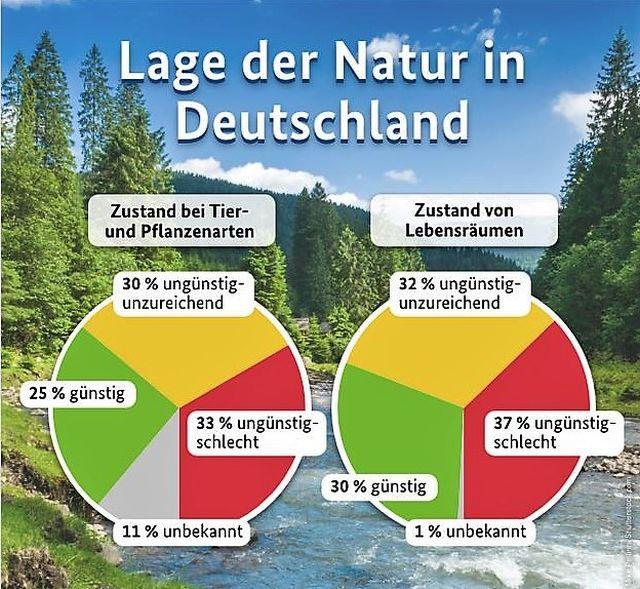 """Grafik mit dem Text """"Lage der Natur in Deutschland'. Die Grundaussage: Knapp 70 % der unter dem Blickwinkel des Artenschutzes bewerteten Lebensräume weisen einen ungünstig-unzureichenden oder -schlechten Erhaltungszustand auf. Kein Wunder, dass auch 63 % der betrachteten Arten in diese negativen Kategorien fallen."""