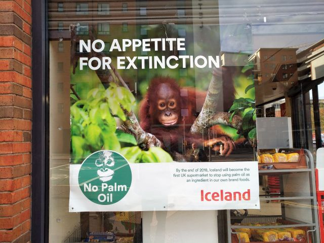 "Werbeplakat in einem Supermarkt der Iceland-Kette in Belfast. ""No Appetite for Extinction"" darunter Fotos vom Regenwald und einem kleinen Orang-Utan. ""No Palm Oil""."