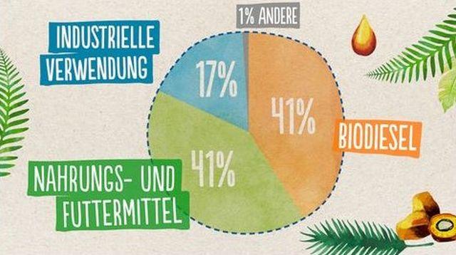 Grafik mit der Verteilung des in Deutschland genutzten Palmöls. Nahrungs- und Futtermittel 41 %, Industrielle Verwendung 17 %, Biodiesel 41 %.