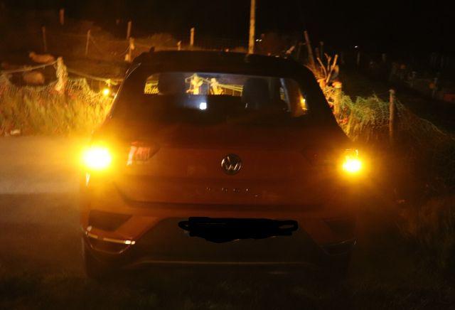 Rötliches Fahrzeug bei Nacht: linker und rechter Blinker leuchten.