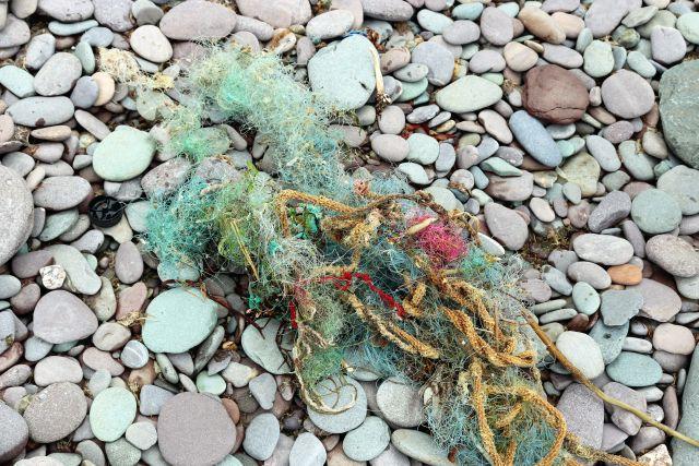 Teul eines Fischernetzes mit engen Maschen, verwoben mit Seetang.