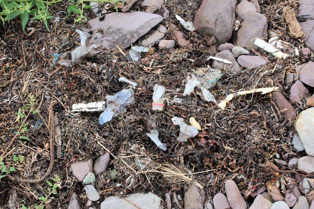 Kleine Plastikreste und angetrockneter Seetang am Strand.