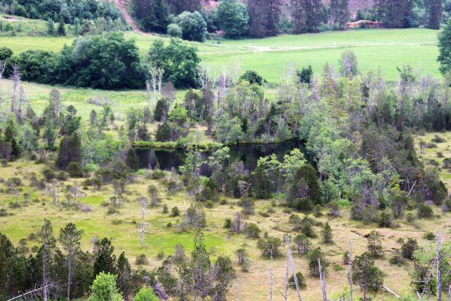 Blick auf ein Moorgebiet mit kleinem See, umgeben von Wiesen.